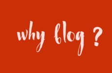 15 reasons why we are starting a #blog at #SeekRed?